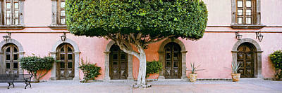 Tree In Front Of The Posada De Las Poster by Panoramic Images