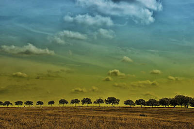 Poster featuring the photograph Tree Line by Susan D Moody