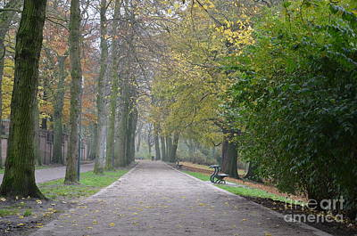 Poster featuring the photograph Tree Lined Path In Fall Season Bruges Belgium by Imran Ahmed