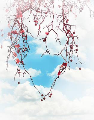 Tree Lover Poster by Debi Bishop