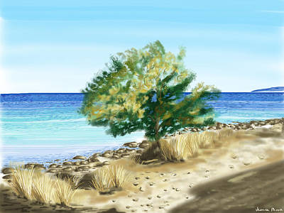 Tree On The Beach Poster by Veronica Minozzi