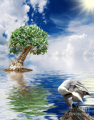 Tree Seagull And Sea Poster