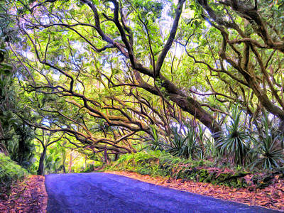 Tree Tunnel On The Big Island Poster