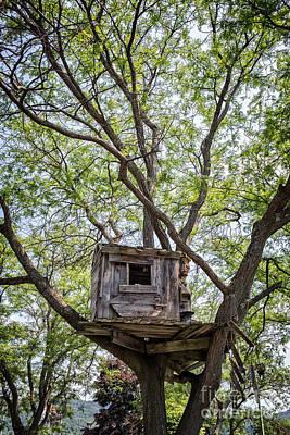 Treehouse Poster by Edward Fielding