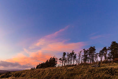 Treeline At Sunset In Wicklow Mountains Poster by Semmick Photo