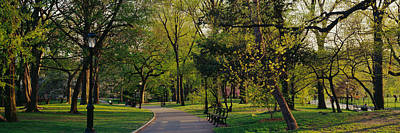 Trees In A Park, Central Park, Nyc, New Poster by Panoramic Images