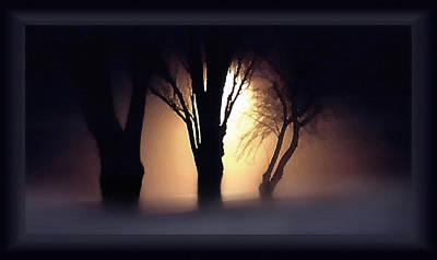 Trees In Midnight Fog Poster by Steve Ohlsen