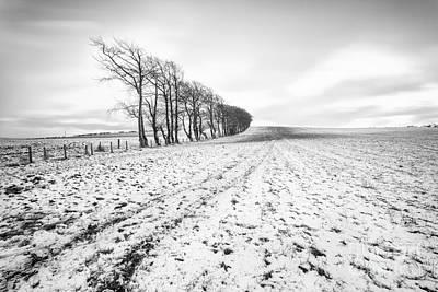 Trees In Snow Scotland V Poster by John Farnan