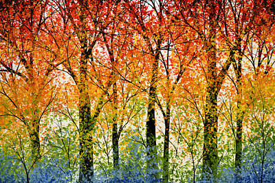 Trees Of The Rainbow Poster by Amy Giacomelli