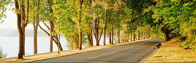 Trees On Both Sides Of A Road, Lake Poster by Panoramic Images