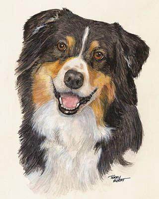 Tricolor Australian Shepherd Poster