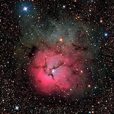 Trifid Nebula (m20) Poster by Damian Peach
