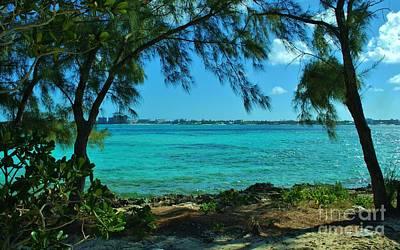 Tropical Aqua Blue Waters  Poster