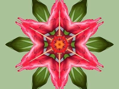 Tropical Flower Mandala Poster