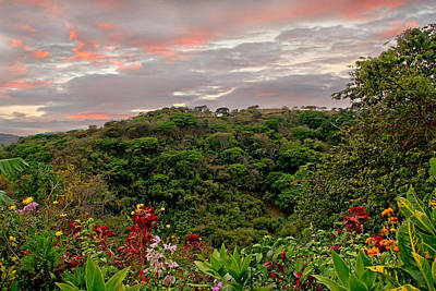 Poster featuring the photograph Tropical Sunset Landscape by Peggy Collins