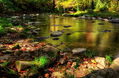 Trout Waters In Fall Poster