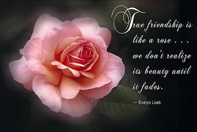 True Friendship Poster by Daniel Hagerman