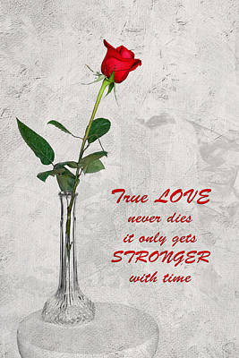 Poster featuring the photograph True Love Never Dies by Dawn Currie