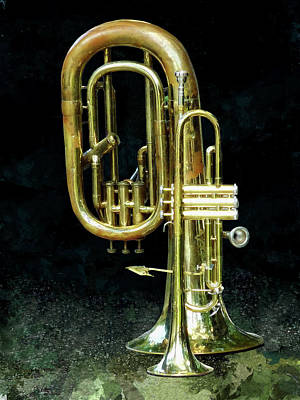 Trumpet And Tuba Poster
