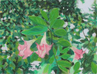 Trumpet Flower Tree Poster