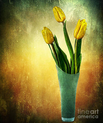 Tulip Bouquet Poster by Shirley Mangini
