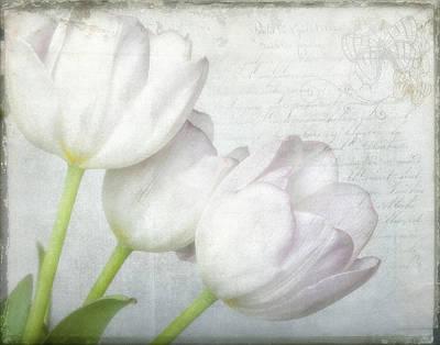 Tulip Trio Poster by Robert Jensen