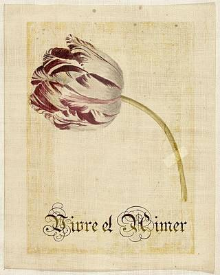 Tulip - Vivre Et Aimer S02t03tr Poster by Variance Collections