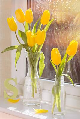 Tulips Poster by Amanda Elwell