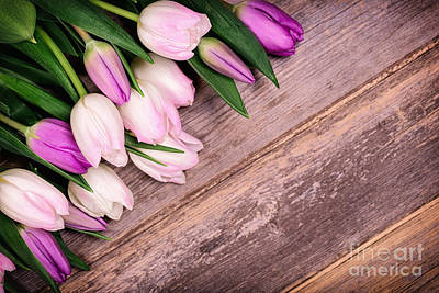 Tulips Over Old Wood Poster by Jane Rix