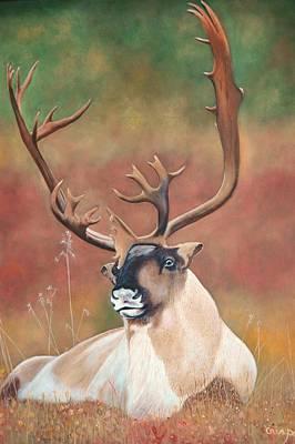 Tundra Caribou Poster by Jean Yves Crispo