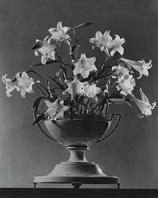 Tureen With Lilies Poster by  The 3