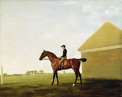 Turf Poster by George Stubbs