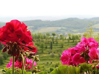 Tuscan Hills And Flowers Poster by Marilyn Dunlap