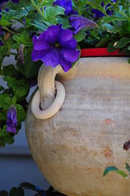 Tuscan Pot Poster