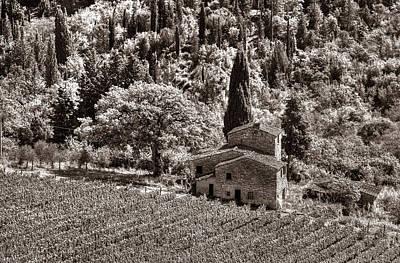 Tuscan Vinyard Poster