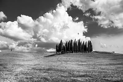 Tuscany Poster by Tony Murray