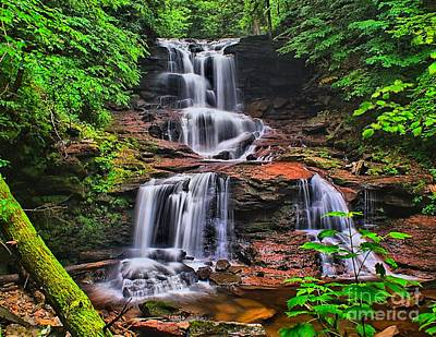 Tuscarora Falls In Spring- Ricketts Glen Poster by Nick Zelinsky