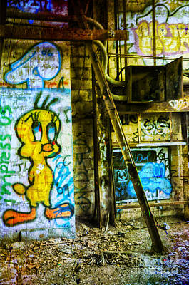 Poster featuring the photograph Tweety by Debra Fedchin