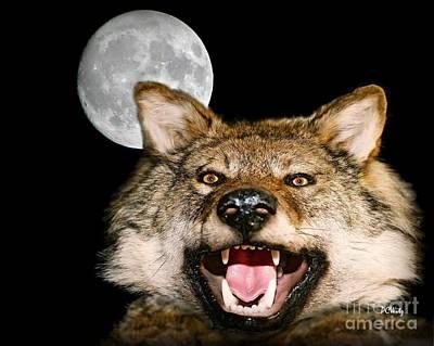 Twilight's Full Moon Poster