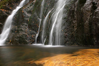 Twirling Leaves At Moss Glen Waterfall Poster by Juergen Roth