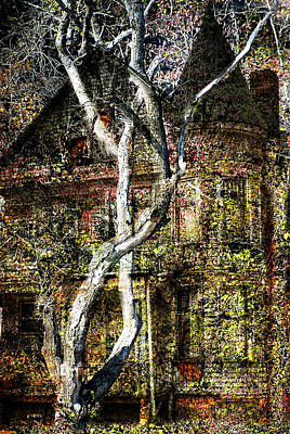 Twisted Tree Overlay Poster by Marty Koch
