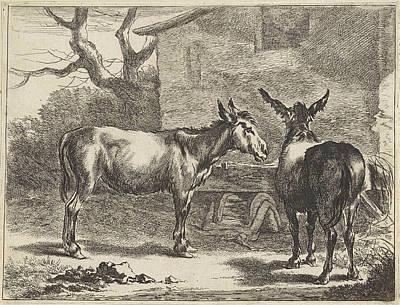 Two Donkeys In A Manger, Jan De Visscher Poster
