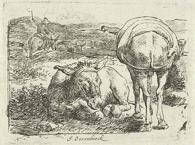 Two Donkeys, Print Maker Jan Van Ossenbeeck Poster by Jan Van Ossenbeeck
