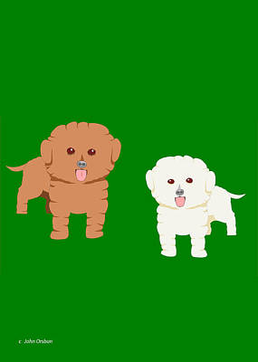 Two Fluffy Dogs Poster