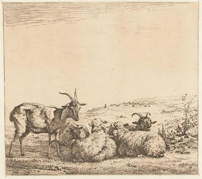Two Goats And Three Sheep, Karel Dujardin Poster