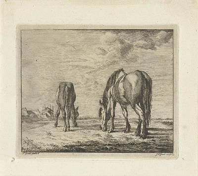 Two Grazing Horses, Jacobus Cornelis Gaal Poster