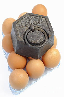 Two Kilos Weight On Eggs Poster by Sami Sarkis