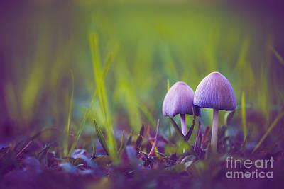 Two Little Elves Poster by Alex Greenshpun