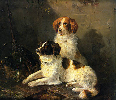 Two Spaniels Waiting For The Hunt Poster