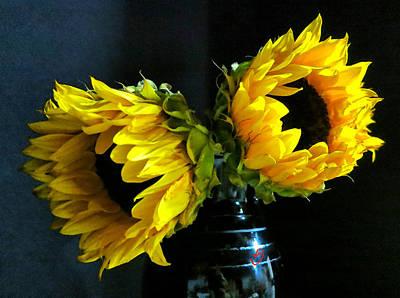 Two Sunflowers - Black Vase Poster